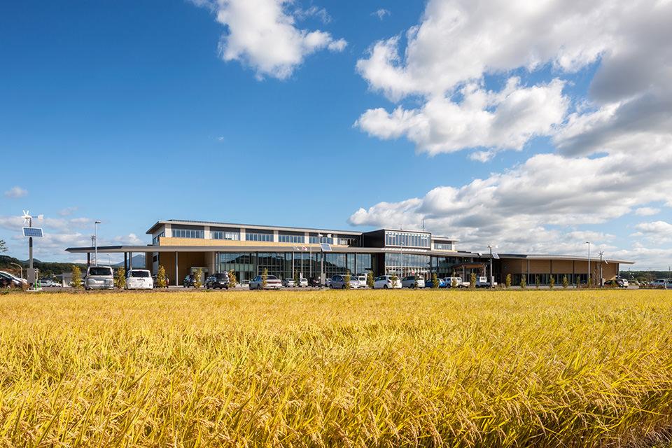 005-黄金色に実る稲穂・田園風景と調和する庁舎