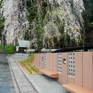 仙台市霊屋下復興公営住宅